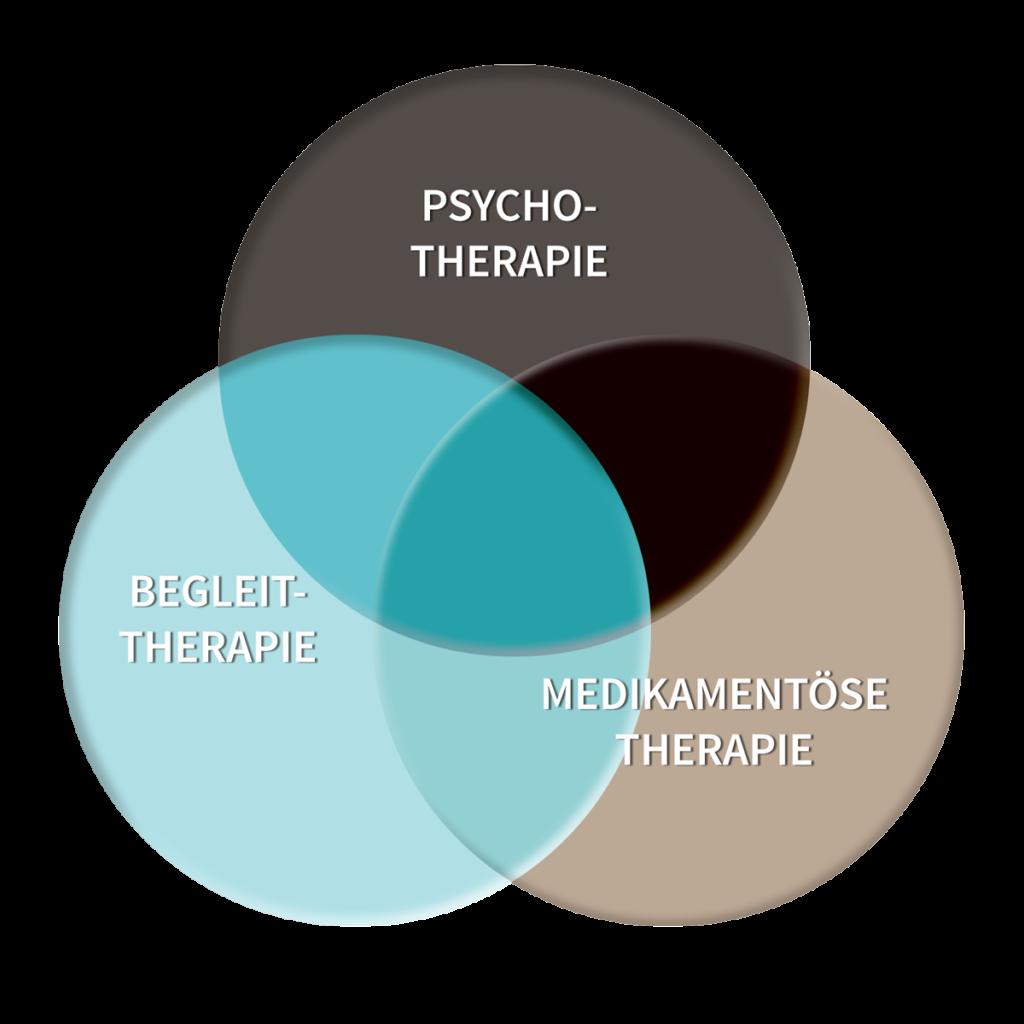 Grafik zum Zusammenspiel von Psychotherapie, Begleittherapie und Medikamentoese Therapie